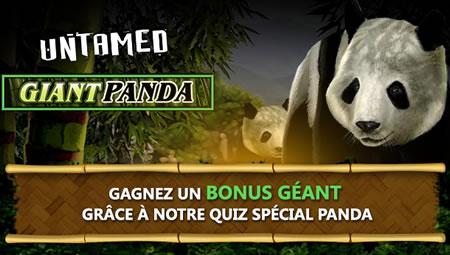 30% de bonus (max 150 €) en répondant au quiz Panda