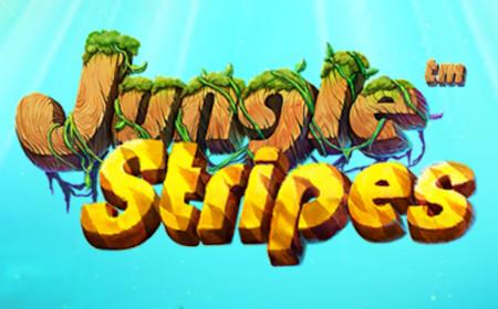 Jungle Stripes - Revue de jeu