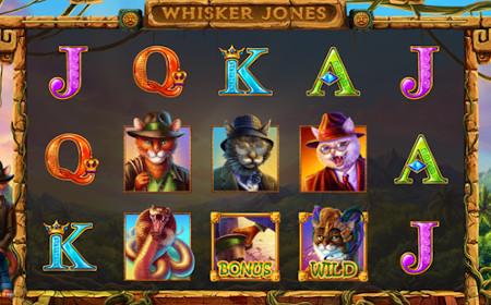 Whisker Jones - Revue de jeu