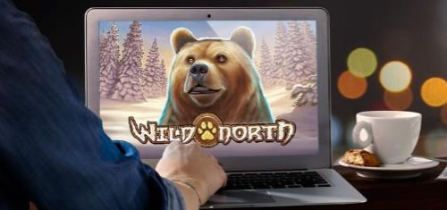 Tournoi Wild North